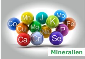 start-mineralien.jpg